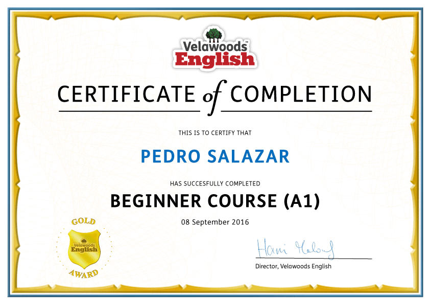 Beginner English Course – Complete Course with Certificate of ...