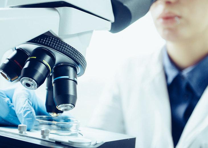 Maestría Internacional en Microbiología y en Análisis de Muestras en ...